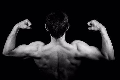 La tensión muscular reduce significativamente la estabilidad