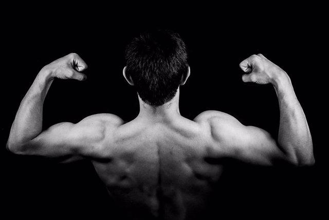 Vigorexia, musculos, hombre musculado