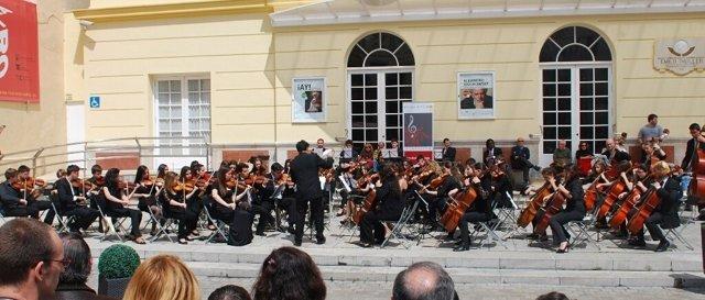 Concierto orquesta promusica clásica instrumentos viola violines
