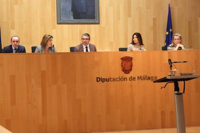 Pleno de la Diputación de málaga enero de 2019 Francisco Salado presidente en fu