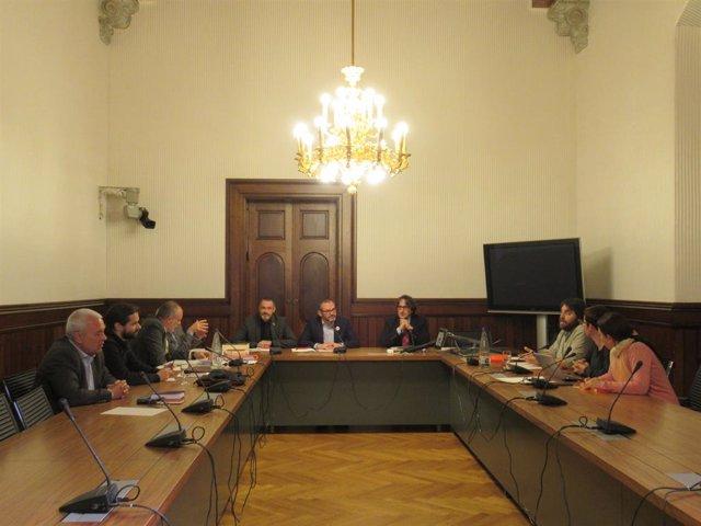 Ponència de reforma del reglament del Parlament