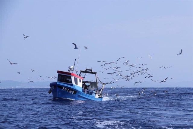 Vaixell pesquer (Arxiu)