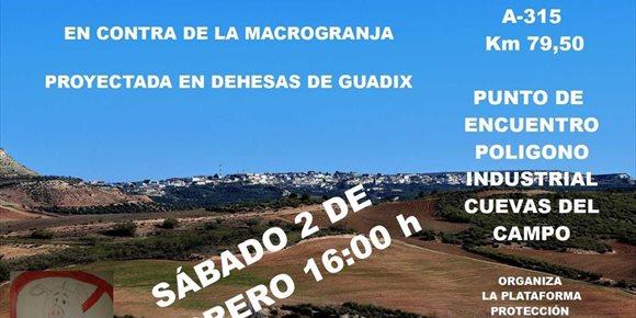 2. Plataforma cortará la carretera A-315 este sábado en contra de la macrogranja porcina de Dehesas de Guadix (Granada)