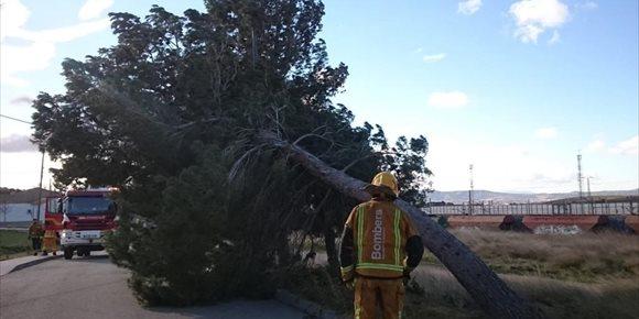 3. El viento provoca desprendimientos y la suspensión de partidos de fútbol y actividades en Alicante