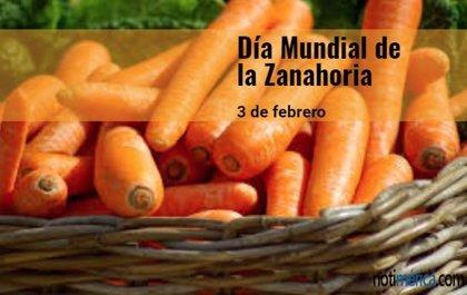 3 de febrero: Día Mundial de la Zanahoria, ¿sabes por qué son de color naranja?