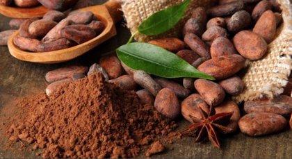 ¿Sabías que México descubrió el chocolate al resto del mundo?