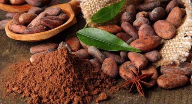 El origen del chocolate está en México