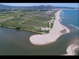 Restauració ambiental dels ecosistemes costaners de la Pletera