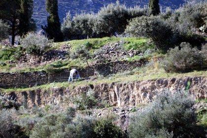 SOS Costa Brava reclama revisar la llicència i el pla parcial de Sa Guarda a Cadaqués i que s'aturin els treballs