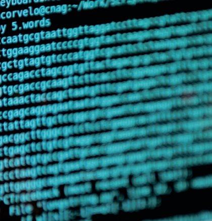 """Un estudio halla más de 800 nuevas regiones del genoma humano """"relevantes"""" para la adaptación"""