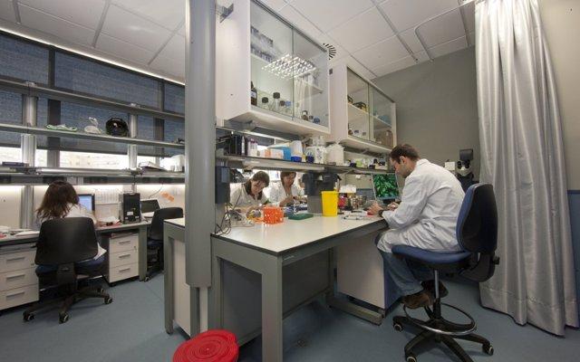 Más de 400 pacientes se benefician de nuevas moléculas que se investigan frente al cáncer en el Virgen del Rocío