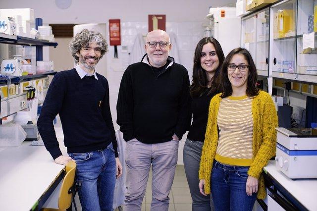 Investigadores de la Universitat de Barcelona (UB) y de su Instituto de Biomedic