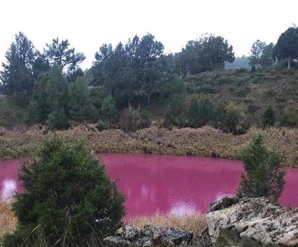 El color rosa del agua de la Laguna de la Tortuga no proviene de contaminación