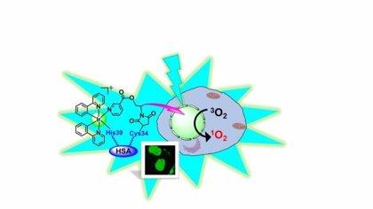 El brillo de la luz en un compuesto de metal de hace 66 millones de años mata a las células cancerosas