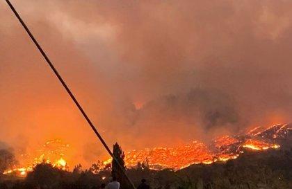 Los fuertes incendios forestales de Chile causan la muerte de dos personas y 121 damnificados