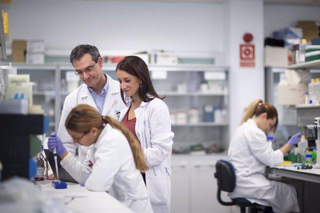 Fundación Mutua Madrileña lanza su XVI convocatoria de ayudas para investigar en