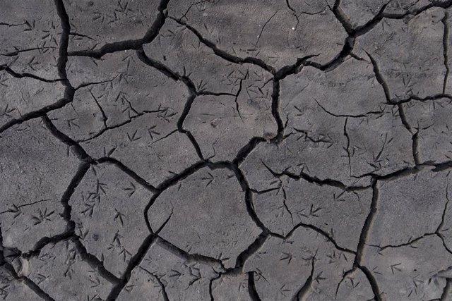 Greenpeace documenta la sequía en el Río Camba, en Campobecerros, Orense.