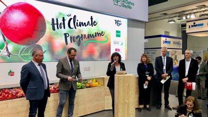 L'IRTA i Fruit Futur tanquen un acord per treure al mercat varietats de poma i pera adaptades a climes càlids