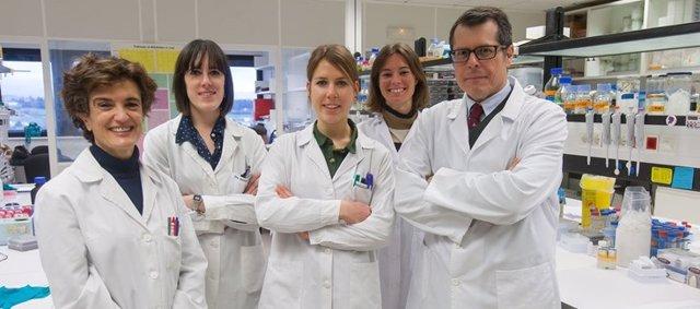 Investigadores españoles identifican mecanismos moleculares implicados en cáncer