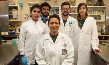 ¿Quién es Eva Ramón Gallegos, la científica mexicana que ha logrado un método preventivo del Virus del Papiloma Humano?