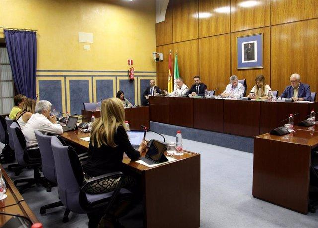 Comisión de Turismo en el Parlamento andaluz