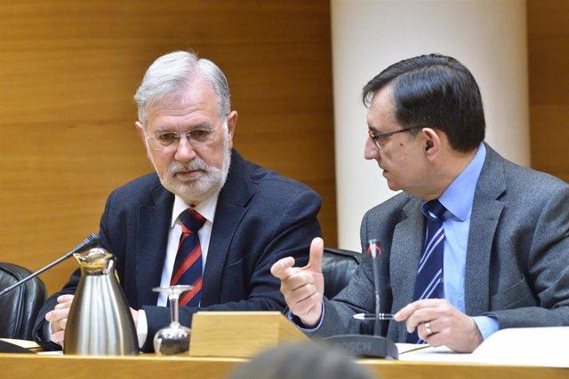 El presidente de IFA cree que el proyecto de ampliación era político y que el arquitecto