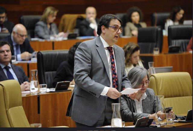 Consejero de Sanidad, José María Vergeles, en el pleno