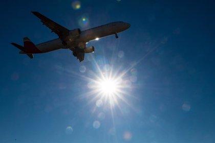 El tráfico aéreo mundial de pasajeros creció un 6,5% en 2018