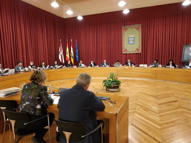 Pleno Logroño 7 de febrero
