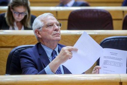 """Borrell analiza con Amnistía el """"impacto"""" sobre los DDHH de """"los últimos acontecimientos"""" en Venezuela"""