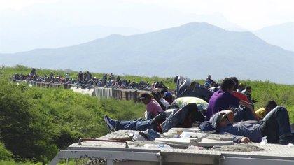 Un grup de 325 migrants centroamericans són detinguts a la frontera d'EUA per la Patrulla Fronterera