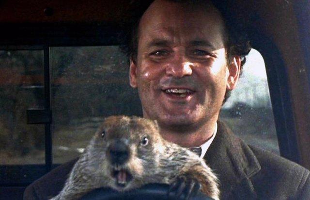 Bill Murray en Atrapado en el tiempo (El día de la marmota)