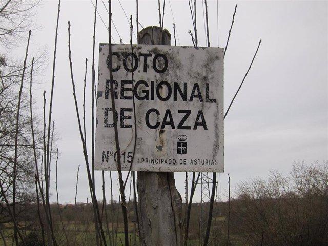 Coto de Caza en Asturias