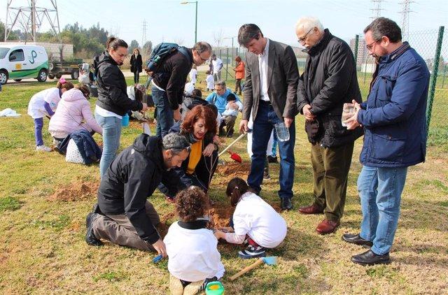 Ayuntamiento realiza una plantación participativa en Parque Guadaíra