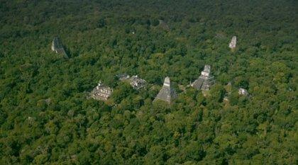 Descubren una ciudad maya bajo la selva de Petén (Guatemala)