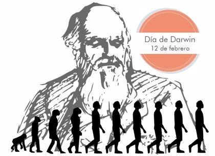12 de febrero: Día de Darwin, el naturalista que revolucionó la biología