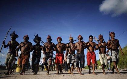 Los fiscales de Brasil piden a la agencia de Minería que rechace las solicitudes de explotación en tierras indígenas