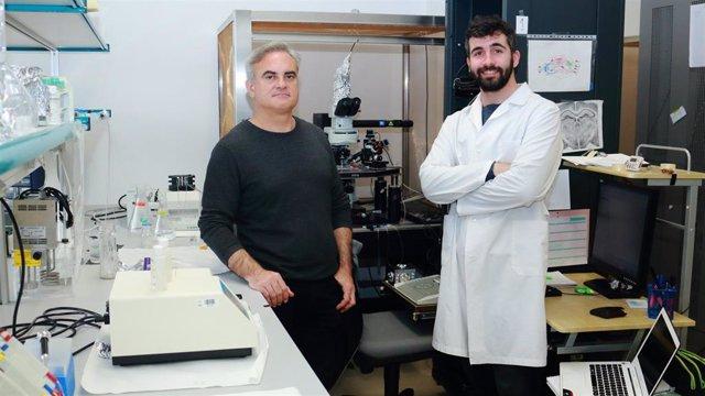 Antonio Rodríguez-Moreno y Rafael Falcón Moya de la UPO