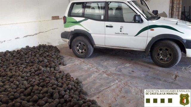 Piñas decomisadas por los agentes medioambientales en Ciudad Real