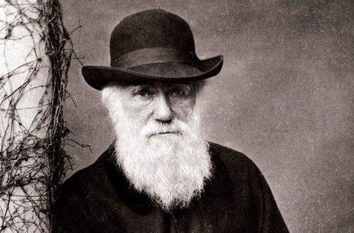 Charles Darwin en 1881