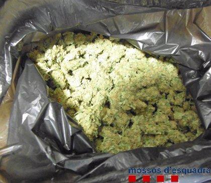 Dos detinguts per portar un quilo de marihuana al cotxe a Figueres (Girona)