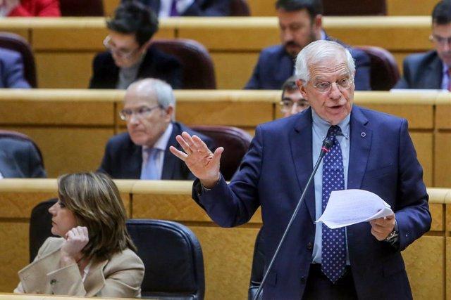 Josep Borrell al Senat