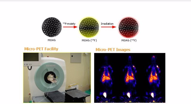 Un equipo de investigadores desarrolla un nueva nanomedicina para tratar el cánc