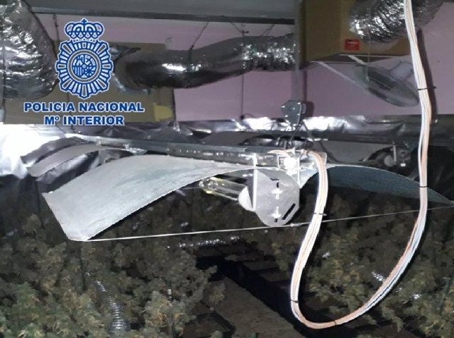 Nota De Prensa: Desmantelada En Jerez De La Frontera Una Plantación De Marihuana