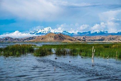 Un masivo terremoto boliviano de 1994 revela montañas a 660 kilómetros bajo tierra