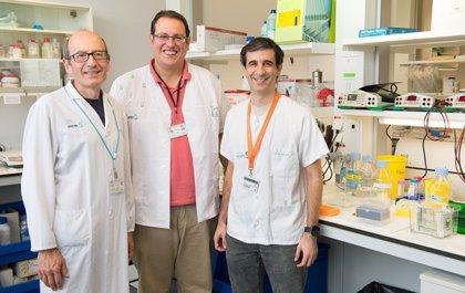 Investigadores españoles estudian terapias más seguras contra el cáncer cerebral infantil