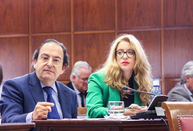 Luis Aznar, senador del PP
