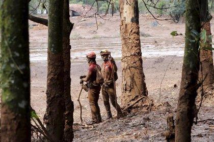 La Policía brasileña detiene a ocho trabajadores de Vale por el derrumbe de la presa en Brumadinho