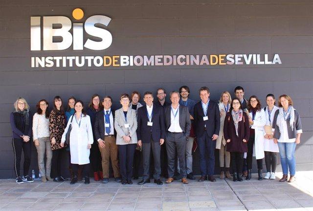Reunión de expertos en el IBIS-Virgen del Rocío