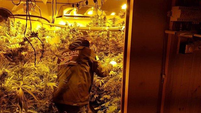 Agents dels Mossos en una operació contra el tràfic de drogues (arxiu)